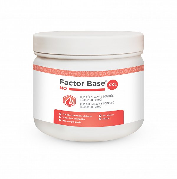 Factor Base NO XXL